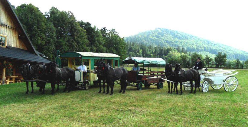 Stadnina koni_Gościniec Szumny_góralskie wesele
